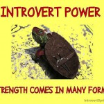 Super September at Introvert Spring