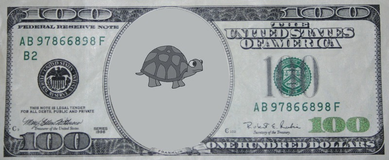 DOLLAR BILL TURTLE