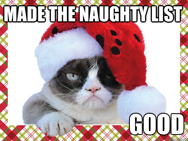 A Grumpy Cat Christmas - Introvert Spring