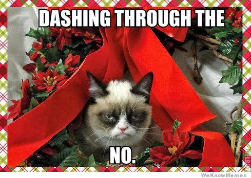 A Grumpy Cat Christmas Introvert Spring