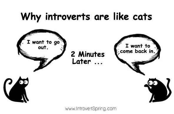The problem only an introvert personality will understand ...
