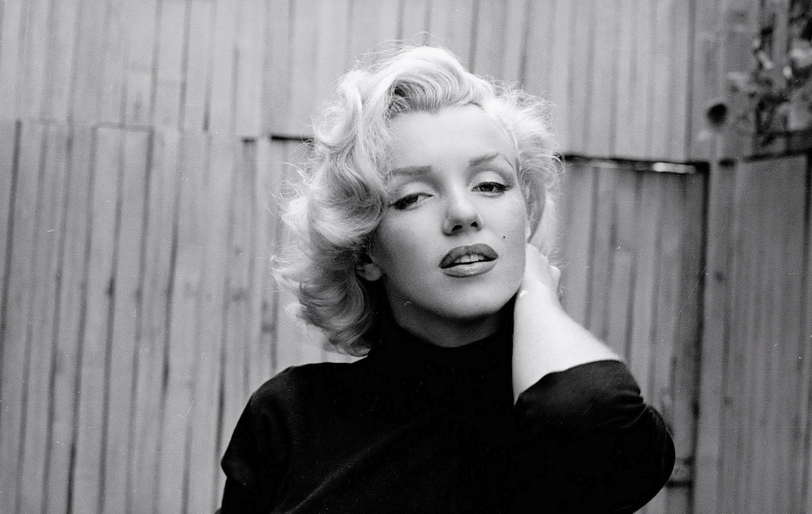 marilyn monroe intriguing introvert