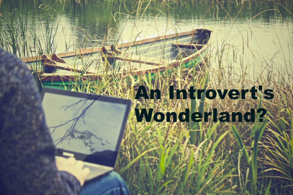 Introvert Wonderland