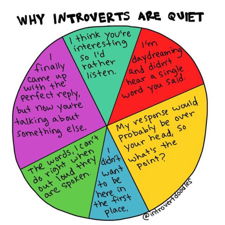 introvert doodles review